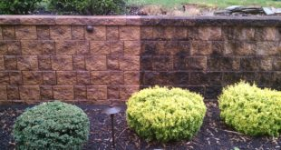 """""""cleaning retaining wall before and after""""的图片搜索结果"""