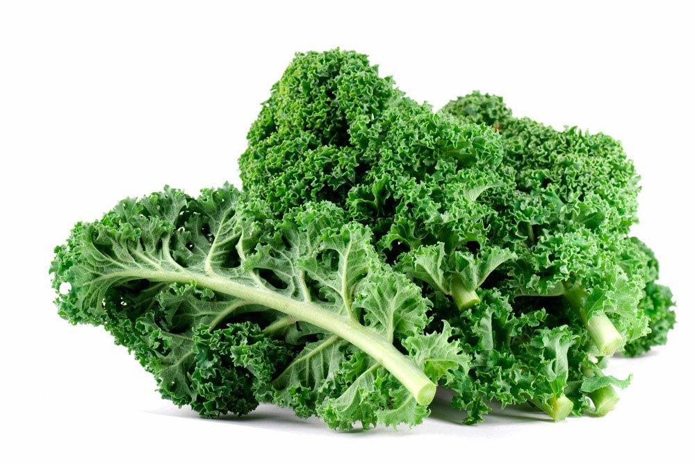 Z:\611-20180908\Final\B Section\B06\B06-神秘蔬果怎么吃\羽衣甘蓝 (Kale).jpg