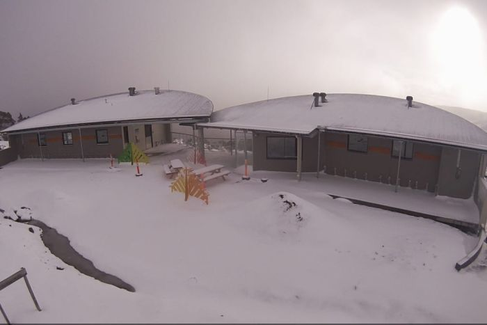 Snow at Mount Field in February