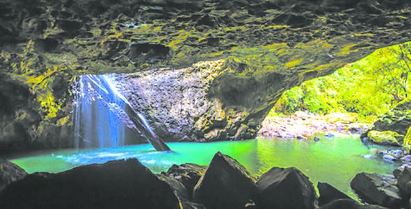 黄金海岸春溪国家公园自然桥萤火虫洞