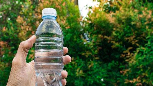 人们食用海产品、饮用瓶装水等,可能是人体内微塑料颗粒的主要来源。