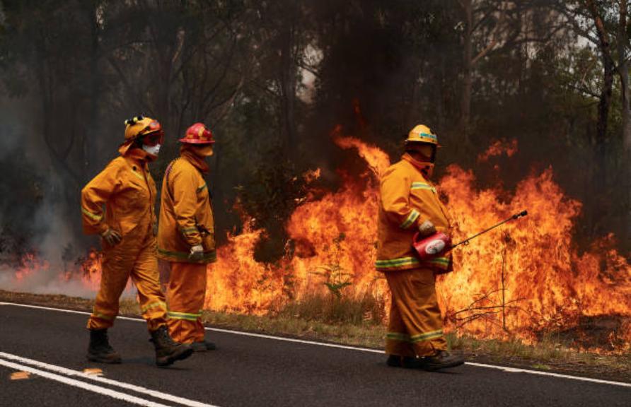 新州、昆州森林大火。(图片来源: Brett Hemmings/Getty Images)