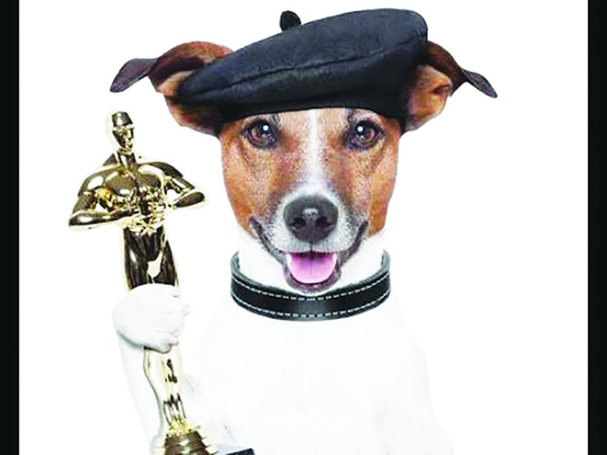 宠物狗奥斯卡