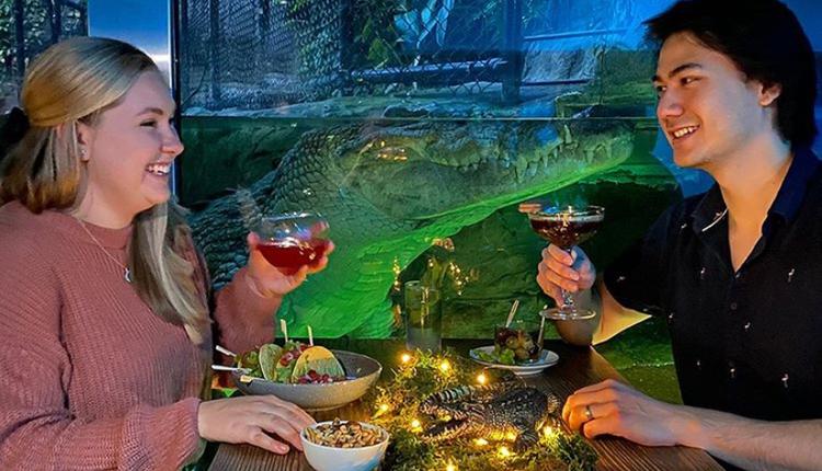 Croctail Bar萬聖節酒吧秀