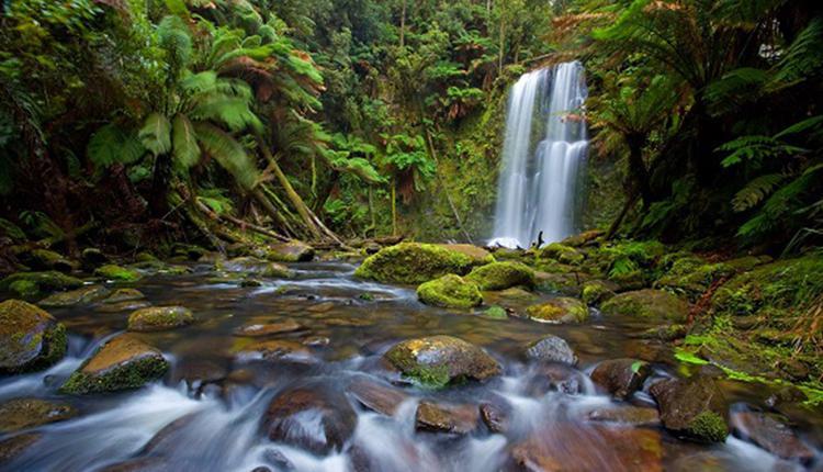 博尚瀑布Beauchamp Falls