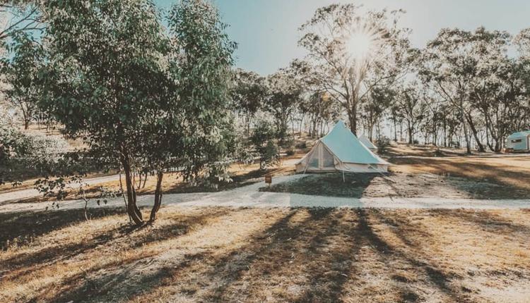 Cosy Tents (圖片來源:Cosy Tents臉書)
