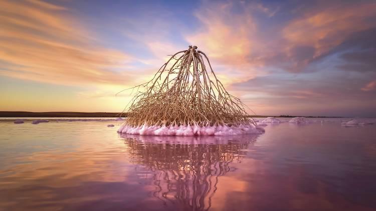 Lake Tyrrell 图片来源:Parks Victoria
