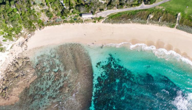 奈德海灘(Neds Beach)