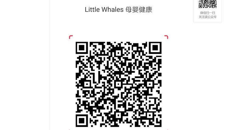 小鲸鱼小红书